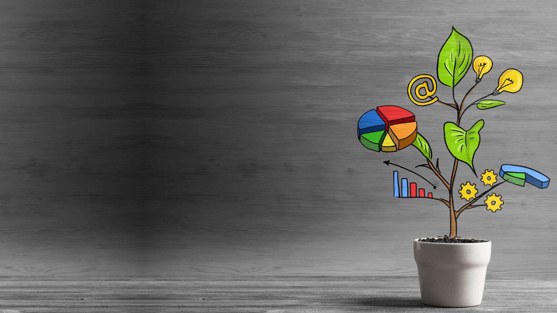 Leggere i dati e comprenderne l'essenza: i Financial Reports di BPA