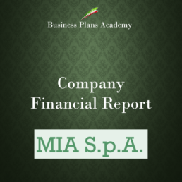 Financial report esempi