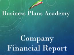 Company Financial Report