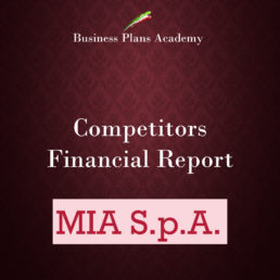 Competitor Financial report esempi