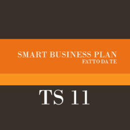 Smart business plan Tutorship 11