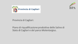 Saline di Cagliari